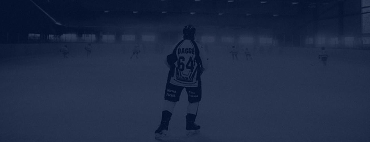 LET´S SKATE!Professionell hockeyutbildning som utbildat ishockeyspelare sedan 2002. Individuell skridsko- , teknik – och taktikutveckling året runt! Vi jobbar med föreningar, spelare från ungdomsnivå till proffs i högsta ligor.